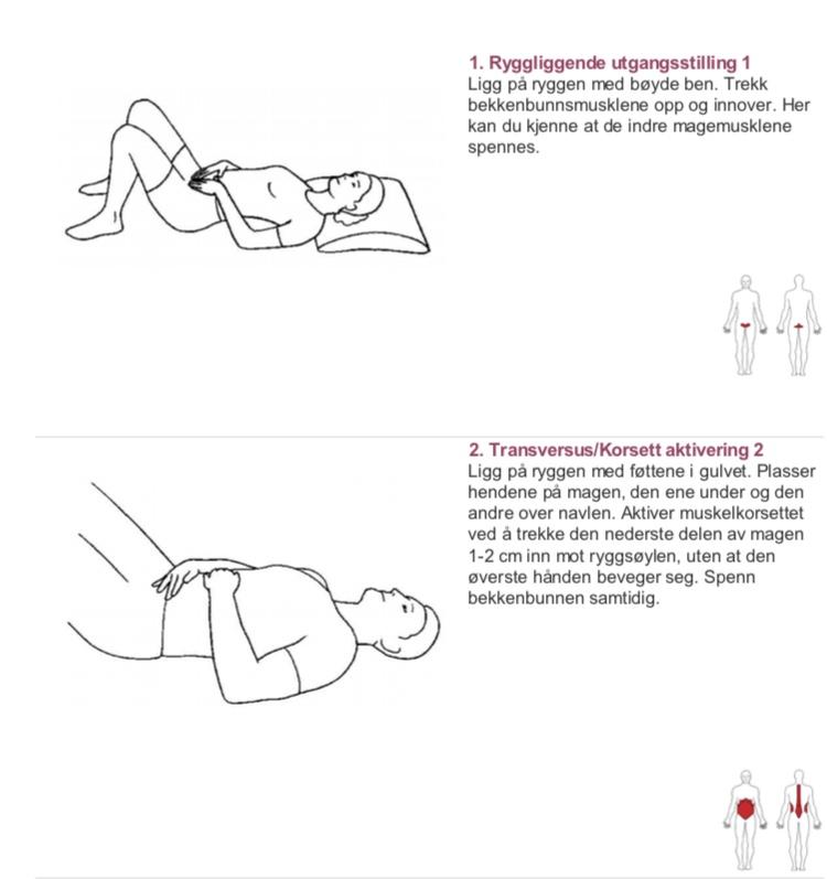 58214105 Legger ved to øvelser som du kan bruke til å teste aktivitet av dyp mage og  bekkenbunn. Syns du det er vanskelig å få til kan det være lurt å ta  kontakt ...